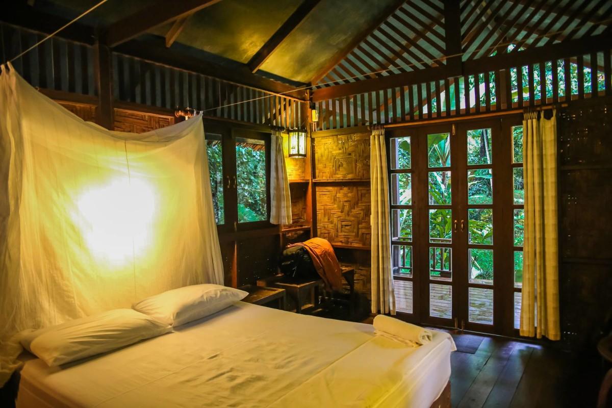domek na drzewie dżungla