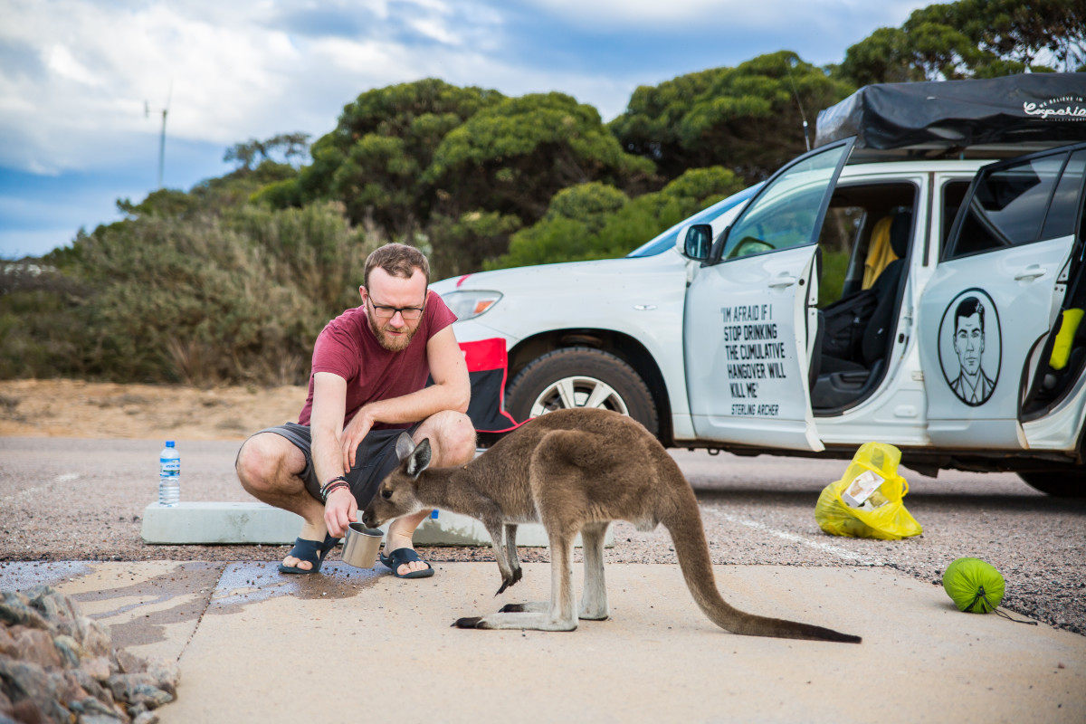 australia kangur lucky bay