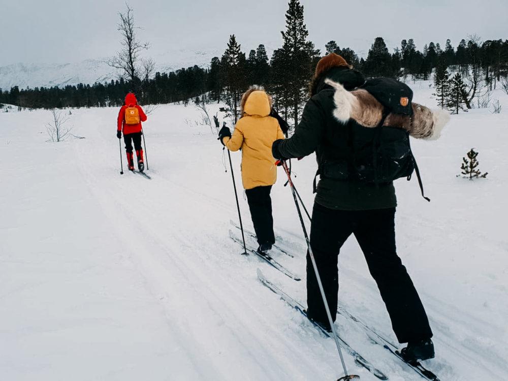 biegówki norwegia