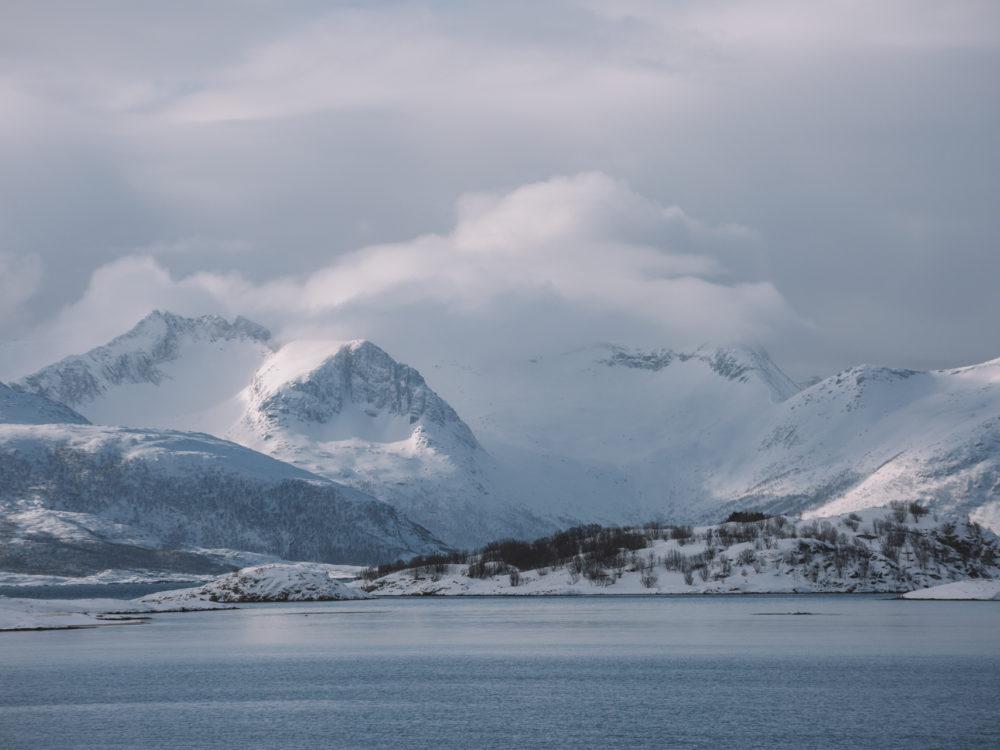 Sommaroya norwegia
