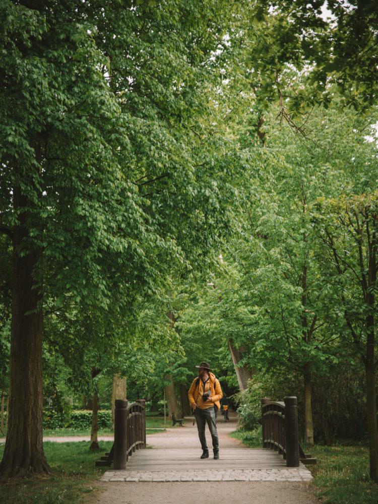 Park Brochowski labirynt Wrocław