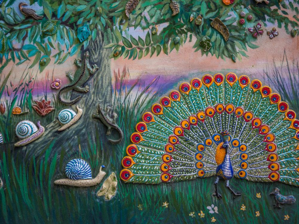 Kolorowe podwórka na Nadodrzu