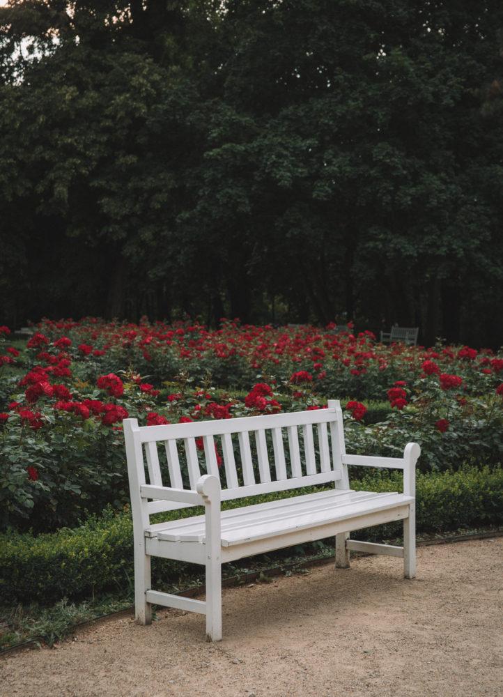 Ogród Saski Lublin